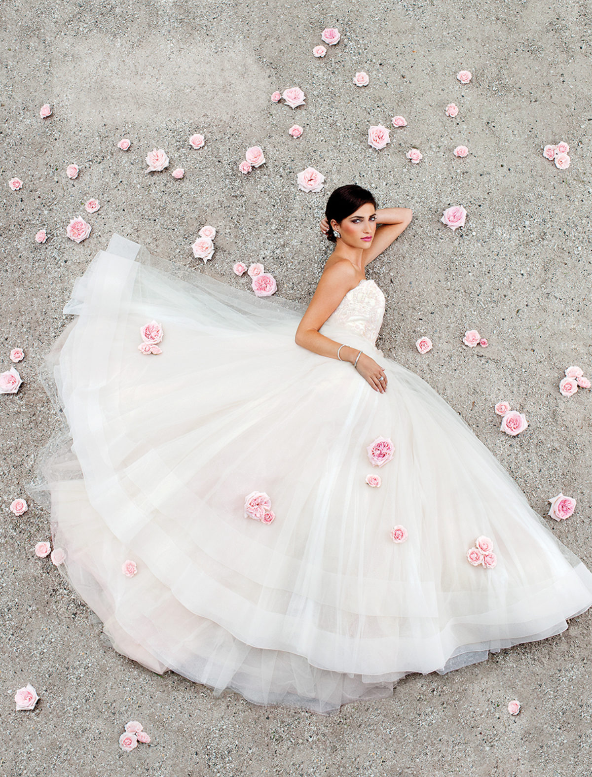 Lazaro Blush Tulle Bridal Ball Gown With Strapless Sweetheart Neckline,  Beaded Chantilly Lace Bodice, And Tulle Skirt With Horsehair Hem ($3,800)  At
