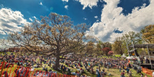 Charm City Folk & Bluegrass Festival at Druid Hill Park.Courtesy of Jordan August Photography.
