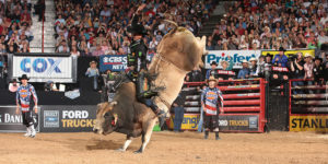 2013 PBR World Champion J.B. Mauney on Bruiser.Photo by Andy Watson of Bullstockmedia.com