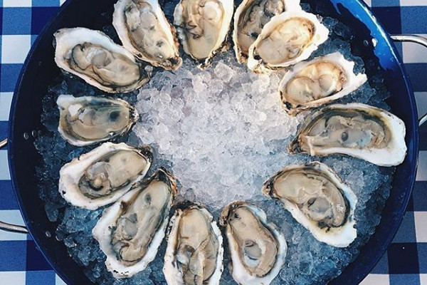 Don't miss the oyster shucking competition on Saturday at Ryleigh's Oysterfest X.Photograph by Julie Qui of In a Half Shell.