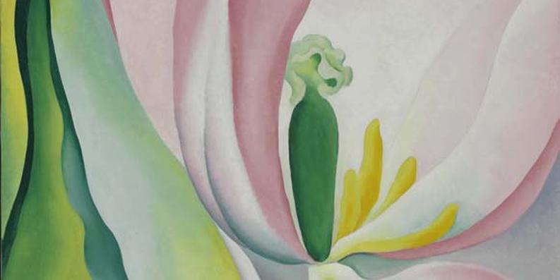 """Pink Tulip,"" Georgia O'Keeffe, courtesy of the BMA"