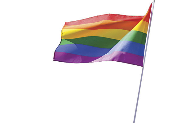 pride-flag_clipped.jpg#asset:43710